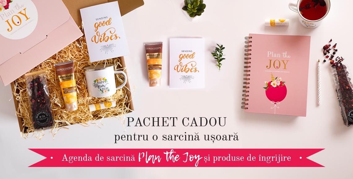 Pachet cadou gravide-Agenda de sarcina_jurnal gravida_lady cozac
